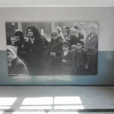Wyjazd edukacyjny do Auschwitz Birkenau
